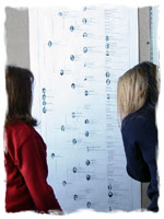A printed genealogy wall chart
